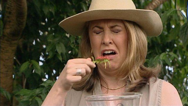 SARAH SMITH EATING